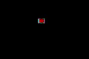 cubicool